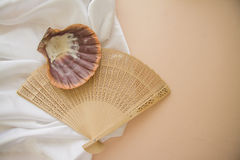 Spa background with silk and shell Stock Photo