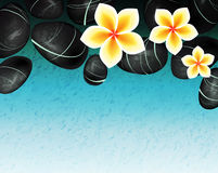 Spa background with frangipani flowers Royalty Free Stock Image