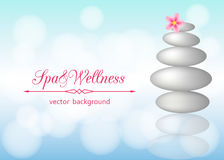 Spa background with stones, pebbles and flower plumeria. Stock Images
