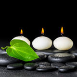 Spa background of white candles and green leaf on black zen stones background with dew, closeup stock images