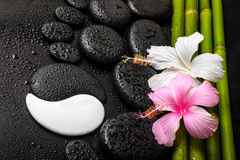 Spa background of white, pink hibiscus flower, symbol Yin Yang a. Nd natural bamboo on zen basalt stones with dew, closeup stock photos