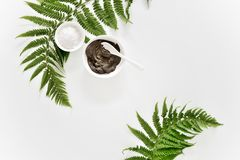 Free Spa Background With Dead Sea Mud And Fern Leaves Royalty Free Stock Photography - 125768387