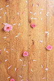Close-up image of pink roses and petals on the floor Royalty Free Stock Photos