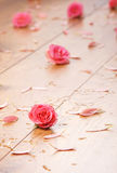 Close-up image of pink roses and petals on the floor Royalty Free Stock Photo