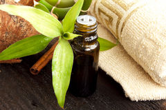 Spa bamboo and essential oil Stock Photography