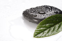 Spa basalt stones and green leaves with water drops Stock Image