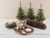 Spa and Bath Essentials with Rustic Candle and Cotton Branch. Spa and bath essentials, including artisan handmade soap and salt scrub, with rustic candle and Stock Images