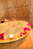 SPA bath with flower petals Stock Image