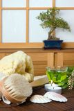 Spa bath products. And green tea against a traditional japanese shoji sliding window Stock Image
