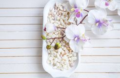 SPA bath salt and orchid, overhead shot. SPA bath salt bowl with orchid flower setting, overhead shot Royalty Free Stock Photography