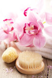 Spa and bath set with orchid flower Stock Image