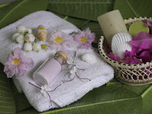 Spa beauty. Exotic tropical flowers sea shells stons towels salt soap on green leaves Stock Photo