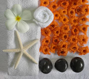 Spa beauty. Exotic tropical flowers starfish stones on white towels Stock Image