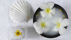 Spa beauty. Exotic tropical flowers sea shells  towels soap Stock Photos