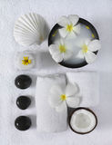 Spa beauty. Exotic tropical flowers sea shells  towels salt soap Royalty Free Stock Photography
