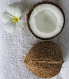 Spa beauty. Exotic tropical flowers coconuts on white towels Royalty Free Stock Photo