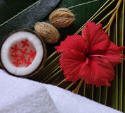 Spa beauty. Exotic tropical flowers coconuts white towels Royalty Free Stock Image