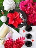 Spa beauty Royalty Free Stock Photography