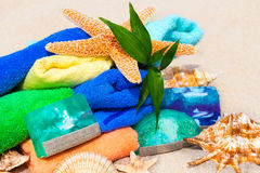 Spa beauty concept with towels, soap, shells and green fresh pla Stock Photos