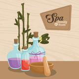 Spa beauty and health aroma therapy bamboo. Vector illustration eps 10 vector illustration