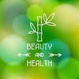 Spa beauty and health label on blurred background. Spa beauty and health label on abstract blurred background Royalty Free Stock Photos