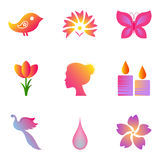 Spa and beauty icons set. Set of colourful icons for spa, cosmetics, beauty Royalty Free Stock Images
