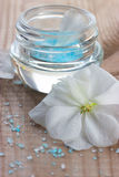 Spa beauty product Stock Photography