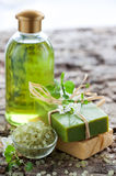 SPA beauty treatment products. SPA and body care products royalty free stock images