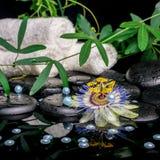 Spa begrepp av passiflorablomman, filialer, handdukar, zenbasalt s Arkivbilder