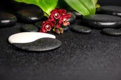 Spa begrepp av zenen och Yin-Yang stenar, röd orkidé arkivbild