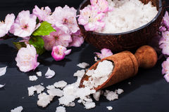 Spa begrepp med blommor av mandeln Royaltyfri Fotografi
