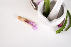 Spa begrepp med salt och aloe vera i bunke på vit bakgrund Fotografering för Bildbyråer