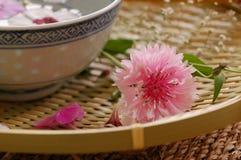 Spa blom- sammansättning Arkivfoto