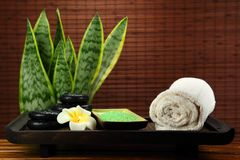Spa and body care Stock Image