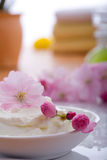 Spa and body care Royalty Free Stock Photos