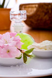 Spa and body care Royalty Free Stock Images