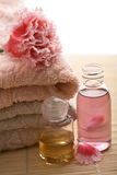 Spa and body care background Royalty Free Stock Photo