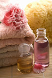 Spa and body care background Stock Image