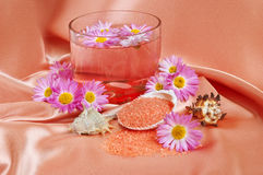 Spa and body care background Stock Photography