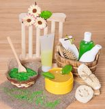 Spa and body care cosmetics and accessories. Bath sea salt, natural body scrub, shampoo, shower gel, pumice, wisp, loofah, massage comb with green leaves and Stock Photo