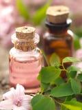 Spa bottles Stock Images