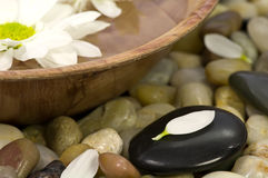 Free Spa Bowl Stock Images - 4488544