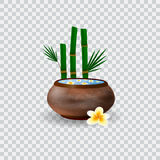 Spa bowl filled with water and plumeria flowers. Bowl and bamboo vector illustration Royalty Free Stock Images