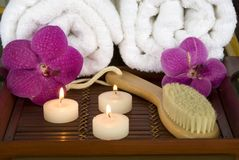 Spa brush Royalty Free Stock Images