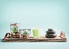 SPA, calmness and releasing stress concept background with green candles, Zen stones and succulent plants on tray at pastel blue. Background . Healthy lifestyle stock photo