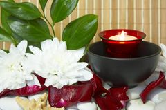 Spa candle. With rose petals, white flowers and stones Royalty Free Stock Images