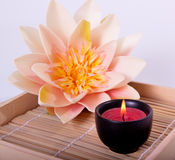 Spa candle and flower for aromatherapy Stock Photography