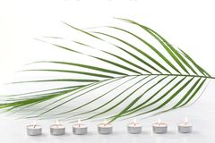 Relaxing Concept- Spa candle, on green leaves background texrure with copy text Royalty Free Stock Images