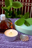 Spa candle, oils and mint soap Stock Photo
