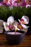 Spa candle and orchid flowers Royalty Free Stock Photos